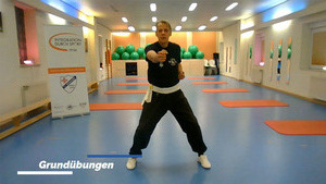 """Kung Fu-Online-Training"" per Zoom..."