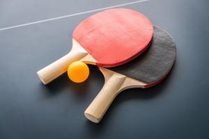 Tischtennis TV Borghorst